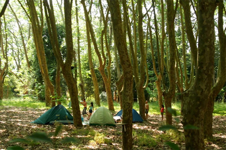 FIGURA-1-Parco-Rainha-Leonor,-Caldas-da-Rainha,-Portugal,-2013-(foto-Ferrara)