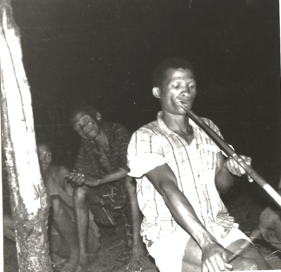 FIGURE 1(a). Hunting bow transformed into a mouthbow by !Kung' speaking performer Ndala Lupupa