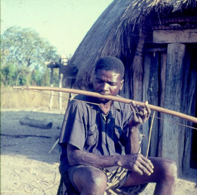 FIGURE 6(a). Hunting bow (onkhonji) transformed into a musical bow (sagaya) by Pequenino from the ethnic group of the Ova-Nkhumbi